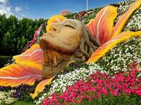 Lịch trình vui chơi lễ hội Hoa Xuân dịp Tết 2019