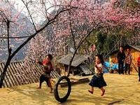 Top những điểm du lịch hấp dẫn nhất Việt Nam dịp Tết Nguyên đán 2019