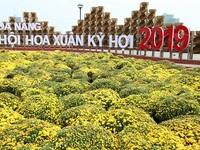 Đà Nẵng Tết Kỷ Hợi có thêm một địa điểm tham quan đặc biệt ấn tượng