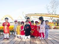 Đà Nẵng: Rộn ràng Tết sớm ở đường hoa xuân
