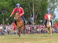Du khách thích thú khi đến xem Hội đua ngựa Gò Thì Thùng