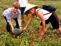 Một ngày khám phá làng quê Triêm Tây - Quảng Nam