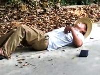 Du khách Trung Quốc bị rắn cắn chết tại chỗ khi mải tạo dáng chụp ảnh