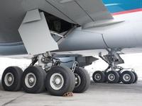 """Tóm gọn hành khách trốn dưới càng máy bay định """"đi ké"""" miễn phí"""