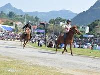 Lễ hội đua ngựa lớn chưa từng có trên cao nguyên trắng Bắc Hà