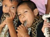 Bí ẩn ở ngôi làng kỳ lạ coi rắn độc như bầu bạn