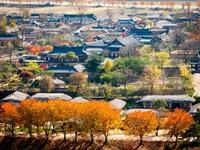 Tỉnh lớn nhất Hàn Quốc khai trương văn phòng xúc tiến du lịch ở Hà Nội