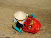 """Chật vật theo dấu chân những """"phu mót rác"""" trên bãi biển Hạ Long"""
