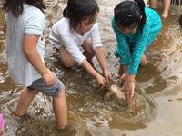 Những địa điểm vui chơi hút khách quanh Hà Nội không nên bỏ qua dịp 2/9