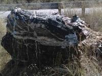 """Tảng đá """"phù thủy"""" nặng 1 tấn trong vườn quốc gia biến mất bí ẩn"""