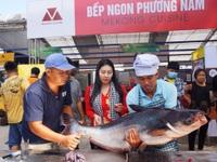 Cá tra sông 30kg được chế biến 30 món ở Hội chợ du lịch quốc tế Cần Thơ