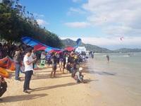 """Du khách mãn nhãn với """"bữa tiệc"""" ván diều trên biển Ninh Thuận"""