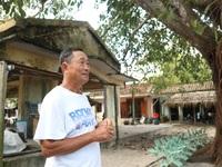Giới trẻ săn lùng địa điểm tại Quảng Nam xuất hiện trong phim Mắt Biếc