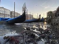"""Hết ngập lụt lại đến khô hạn, """"thánh đường du lịch"""" Venice khốn khổ vì... nước"""