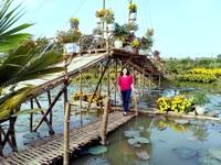 """Check-in """"vườn trái cây Nam bộ"""" nơi rốn lũ của Quảng Nam"""