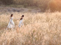 Mê mẩn mùa cỏ cháy trên bán đảo Sơn Trà