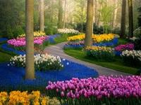 Mãn nhãn với vườn hoa đẹp nhất thế giới