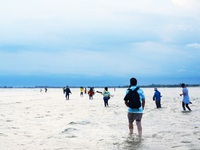 Kỳ thú những cung đường bộ xuyên biển