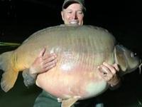 Bắt được cá khổng lồ thuộc họ cá chép nặng 51 kg