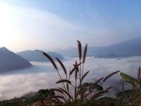 Ngắm biển sương mù giữa đại ngàn Pù Luông