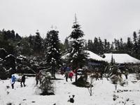 Dân du lịch háo hức chờ tuyết rơi ở Sapa