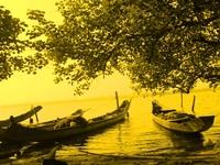 Đông về đầm phá Tam Giang