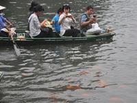 Du khách thích thú ngắm cá chép đỏ ở Tràng An