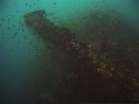"""""""Báu vật"""" thế giới tuyệt đẹp ẩn giấu dưới đại dương - Kỳ 2"""