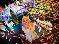Gợi ý lịch trình 3 ngày đón giáng sinh tại Singapore
