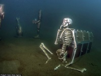 Mê hoặc vẻ đẹp kỳ ảo của bảo tàng dưới nước