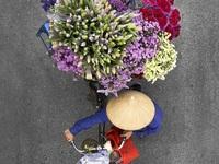 Vẻ đẹp những gánh hàng rong Hà Nội trên báo nước ngoài