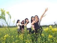 Ngỡ ngàng với cánh đồng hoa cải vàng rực rỡ đẹp bậc nhất Việt Nam