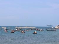 """Chợ hải sản tươi ngon có """"view đẹp nhất nhì Việt Nam"""""""