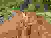 Vừa được UNESCO ghi danh, công trình đường phục vụ gần 27 tỷ đã tan tác
