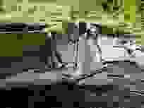 Vừa sửa xong, công trình thuỷ lợi 119 tỷ đồng lại đổ sập tan nát sau mưa