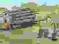 Ai đang trả giá cho tội ác phá rừng?