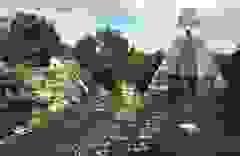 Hệ thống lọc nước của người cổ đại 2.000 năm tuổi vẫn hiệu quả tới ngày nay