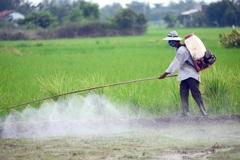 Báo động: Xét nghiệm 67 người ở Hà Nội thì 31 người tồn dư thuốc bảo vệ thực vật, giải pháp nào dự phòng ung thư?