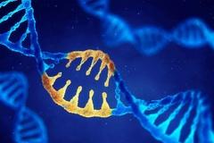 """Lần đầu phát hiện gen di truyền """"điều khiển"""" quá trình di căn của ung thư"""
