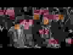 David, Romeo, Cruz, Harper Beckham đi xem thời trang