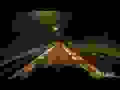 Đua trên đường cao tốc ban đêm tại Tokyo