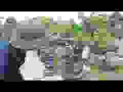 Vườn cây cảnh bonsai hoa, trái 3 miền nổi tiếng Hà thành
