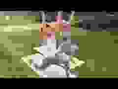 Rhian Sugden tập yoga ngoài công viên