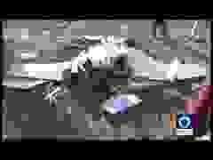 Máy bay không người lái bí ẩn vỡ vụn gần biên giới Iran - Azerbaijan