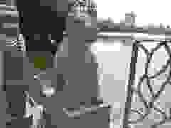 """Điều bí ẩn về ngôi đền thờ """"thần chó"""" giữa trung tâm Hà Nội"""