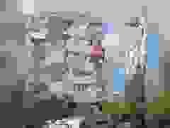 Video động đất 7 độ rung chuyển Hy Lạp, Thổ Nhĩ Kỳ