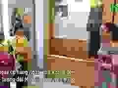 Các đoàn khách tham quan Tượng Đài Bà mẹ VNAH