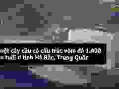 Cây cầu bê tông in 3D dài nhất thế giới tại Trung Quốc