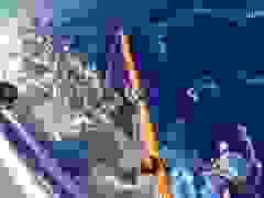 Khoảnh khắc kinh hoàng khi nhóm thanh niên nhảy xuống biển đúng luồng di ch