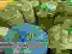 Chuẩn bị thực phẩm để hỗ trợ người dân ở khu vực cách ly